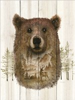 Bear Wilderness Portrait Fine Art Print