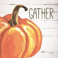 Gather Pumpkin Fine Art Print