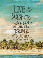 Live in the Sunshine Fine Art Print