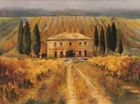 Toscana Vigna Special Fine Art Print