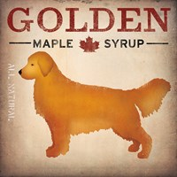 Golden Dog at Show No VT Fine Art Print