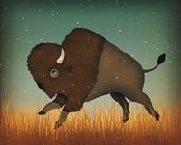 Buffalo Bison II Fine Art Print