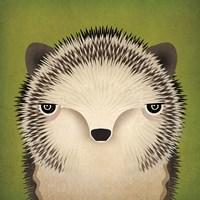 Baby Hedgehog Fine Art Print