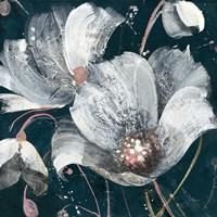 Transluncent Poppies Navy Fine Art Print