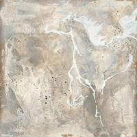 White Horse II Framed Print
