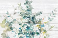 Eucalyptus I on Shiplap Crop Fine Art Print