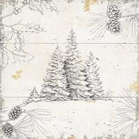 Wild and Beautiful XIII Fine Art Print