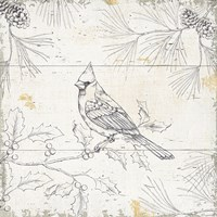 Wild and Beautiful XI Fine Art Print