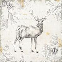 Wild and Beautiful X Fine Art Print