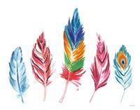 Rainbow Feathers IV Framed Print