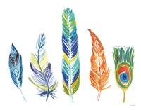 Rainbow Feathers III Fine Art Print