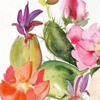 Desert Rose II Fine Art Print