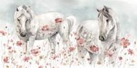 Wild Horses III Fine Art Print