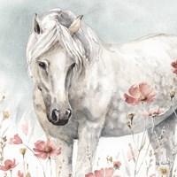 Wild Horses V Fine Art Print