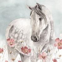Wild Horses IV Fine Art Print
