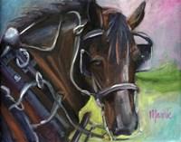Charleston Working Horse Fine Art Print
