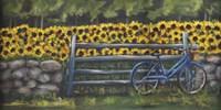 Resting At Buttonwoods Fine Art Print