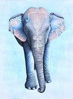 Painted Asian Elephant Fine Art Print