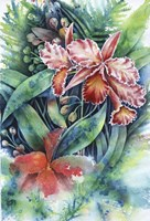Red Orchid Fine Art Print
