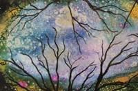 Starry Sky Fine Art Print