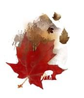 Autmn Leaf Fine Art Print