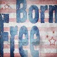 American Born Free Sign Collection 1 Fine Art Print