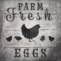 Farm Fresh V2 Fine Art Print