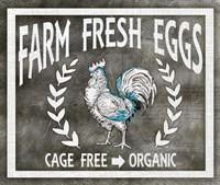 Farm Sign Eggs Fine Art Print