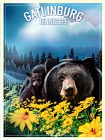Gatlinburg Tennessee Fine Art Print