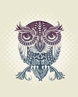 Baby Egypt Owl Fine Art Print