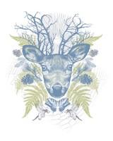 Deer Adventure Fine Art Print