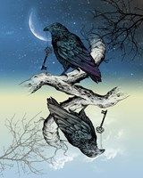 Raven Night and Day Fine Art Print