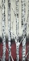 Autumn Birch Fine Art Print