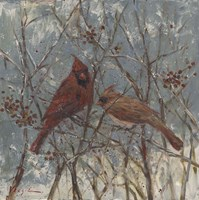 Mr and Mrs Cardinal Fine Art Print