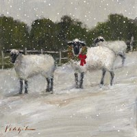 Sheep in Snow Fine Art Print