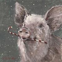 Teri the Christmas Pig Fine Art Print