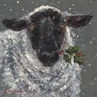 Wren the Christmas Sheep Fine Art Print