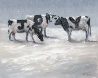 Joy Cows Fine Art Print