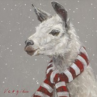 Llama with Red and White Scarf Fine Art Print