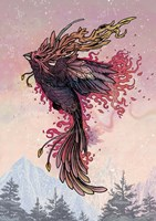 Phoenix Fine Art Print