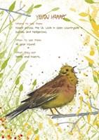 Yellow Hammer Postcard Fine Art Print