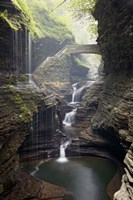Watkins Glen Rainbow Bridge Fine Art Print