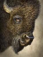 Bison Totem Fine Art Print