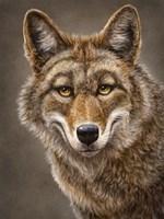 Coyote Totem Fine Art Print