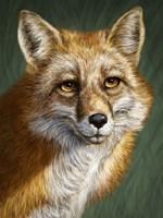 Red Fox Totem Fine Art Print