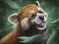 Red Panda Totem Fine Art Print