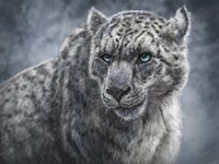 Snow Leopard Totem Fine Art Print