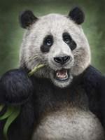 Panda Totem Fine Art Print