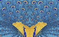 The Peacocks Fine Art Print