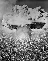 1950s 1960s Atomic Bomb Symbolic Montage Fine Art Print